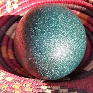 Emu Egg Shaker or Rattle