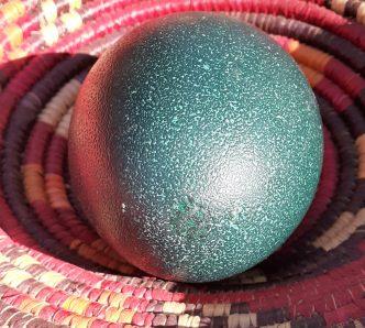 Emu Egg shaker